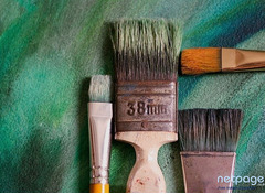 Best Home Painters In Zirakpur